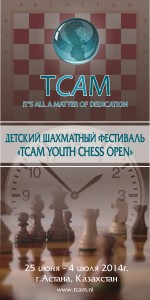 шахмат баннер